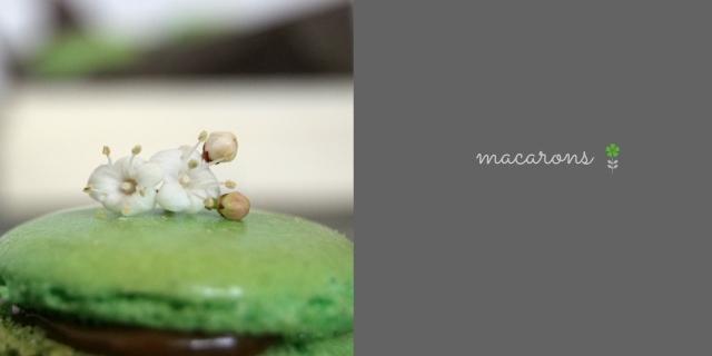 Macarons de menta y chocolate